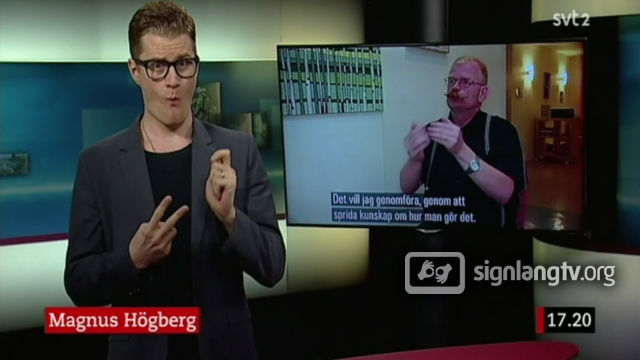 SVT Nyhetstecken - Deaf Swedish Sign Language